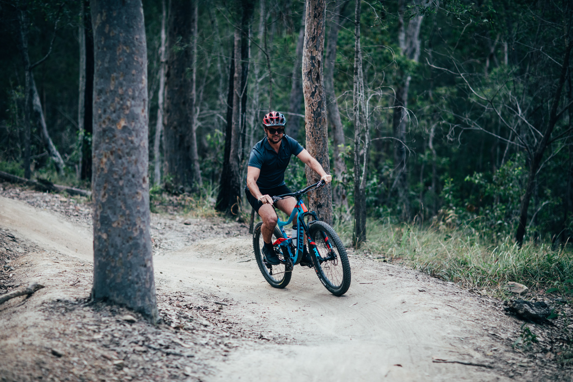 person riding a mountain bike on a dirt track surrounded by dark green trees